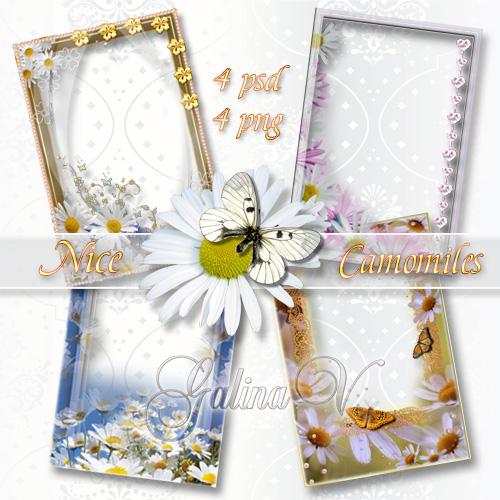 Набор цветочных фоторамок - Милые сердцу ромашки