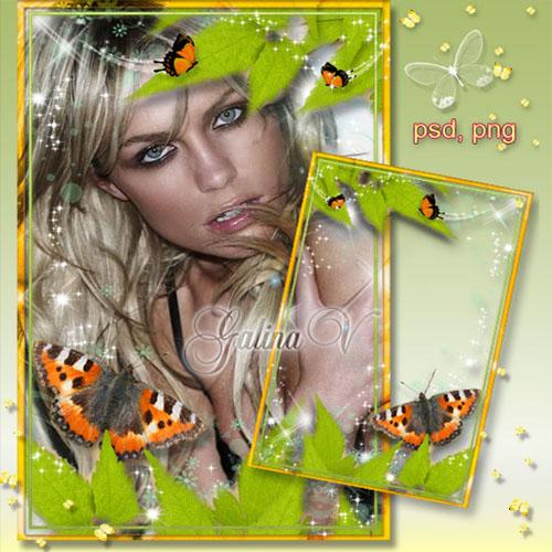 Фоторамка - Весенняя листва и бабочки