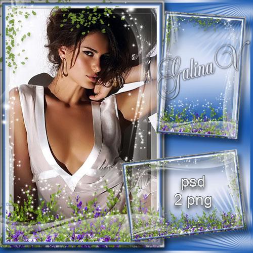 Рамка для фото -  Полевые цветы, как простые мечты
