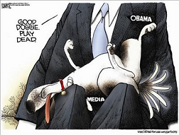 Lapdog Media