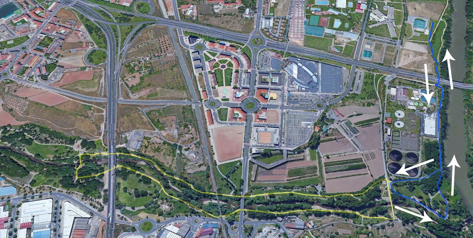 Canicross Popular 2 km.jpg
