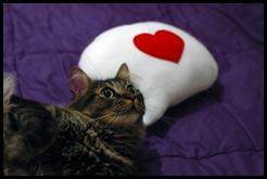 Craftsquatch Icon Pillows