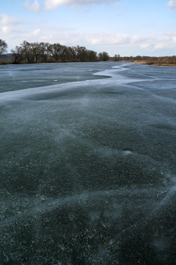 мартовский лёд, Тенистый