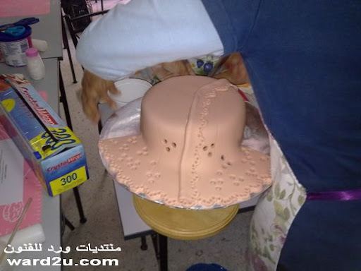 واااااااااااااااااااااااا اااو 5-www.ward2u.com-Embroidery-Cake.jpg