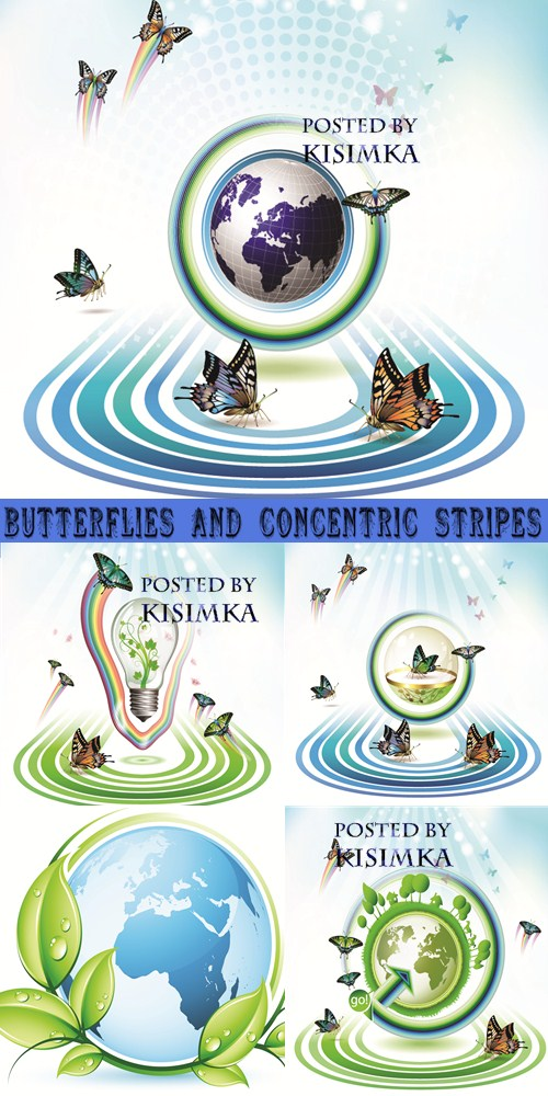 Stock: Butterflies and concentric stripes