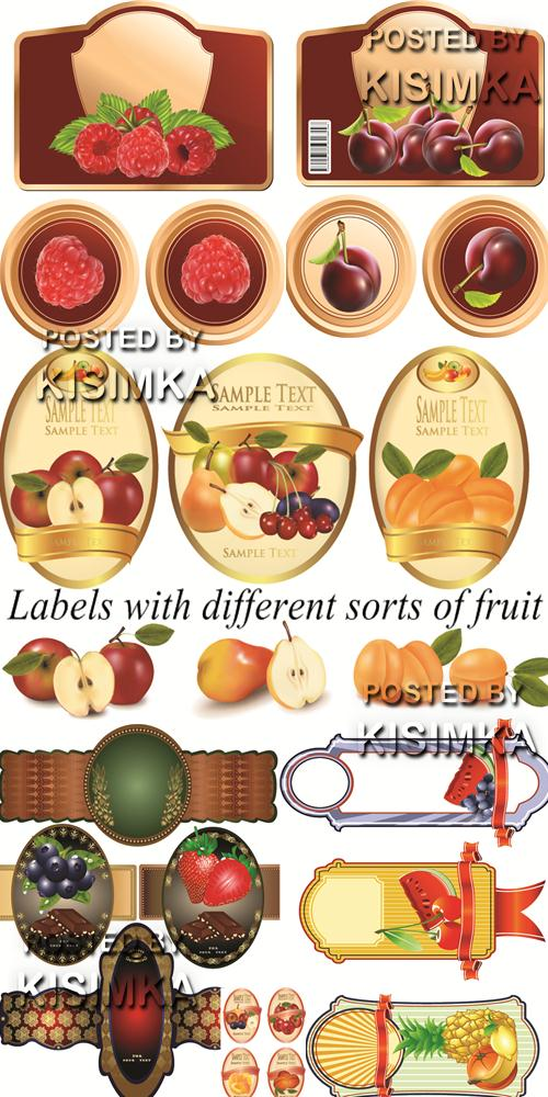 Stock: Labels with different sorts of fruit