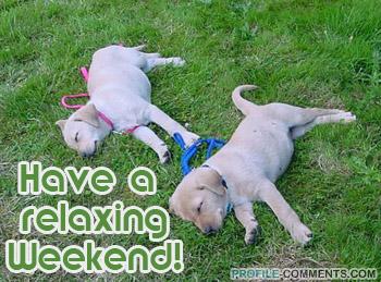 https://lh4.googleusercontent.com/_9W8681AXnyo/TZMJlpb2HWI/AAAAAAAAAWE/0TdF5MbkOKw/relaxing-weekend.jpg