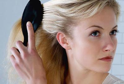 毛の再生治療、マウスで成功。脱毛症治療に応用