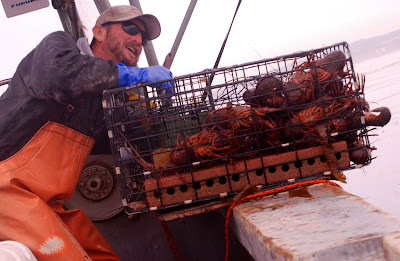 local seafood San Diego, fresh seafood, sustainable seafood, artisinal fisheries