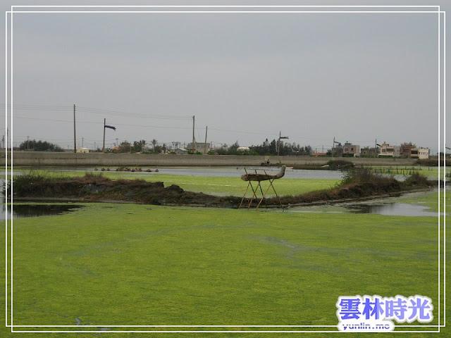 口湖-成龍溼地 2011國際環境藝術節已經開幕囉!