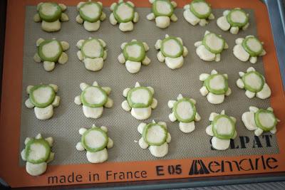overhead photo of turtle sugar cookies
