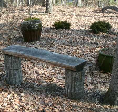 ripped log bench