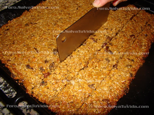 Barritas de cereal (las mejores estas) DSC03539