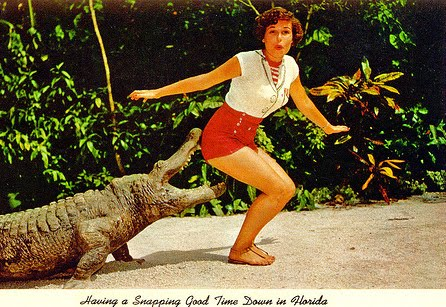 Having a Snapping Good Time in Florida - Postcard Friday #46