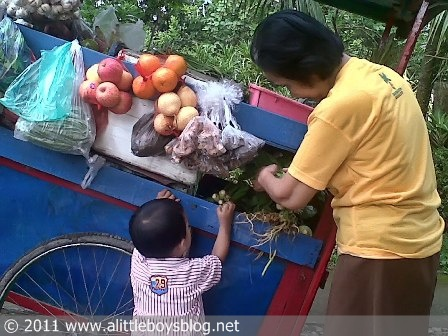 Baby and vegetable pushcart