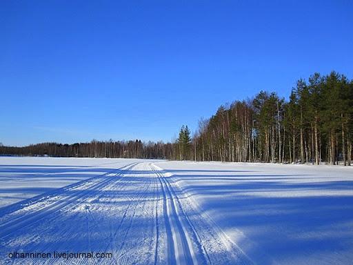 Колеи для конькового и обычного лыжного хода на озере