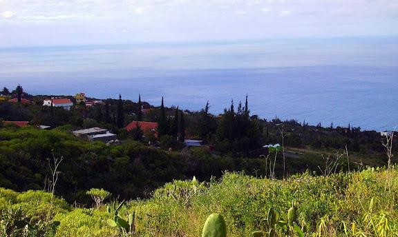 Ausblick auf La Punta,La Palma,Kanaren