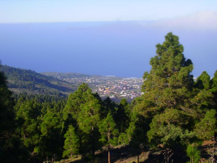 Ausblick auf das Aridanetal im Westen La Palmas,Kanaren
