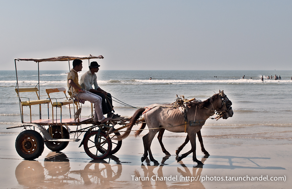 Kashid Beach Horsecart, Tarun Chandel Photoblog