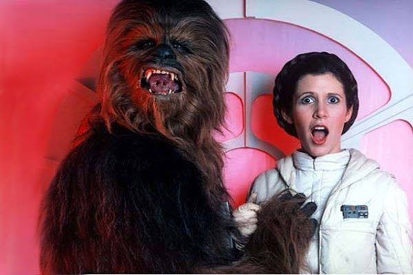 Gallery: Happy Birthday Princess Leia:Safe For Work,dress for girls0