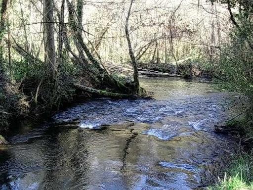 Paseo por el Rio Mandeo R%C3%ADo-Mandeo-5-el-rio