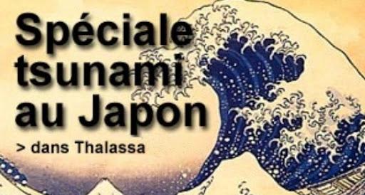 Special Tsunami Au Japon Dans Thalasa Poster un article sur EVO