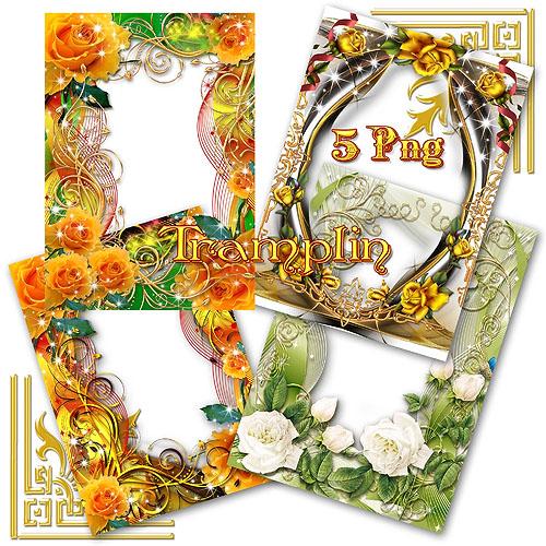 5 Красивых рамок в Png с розами