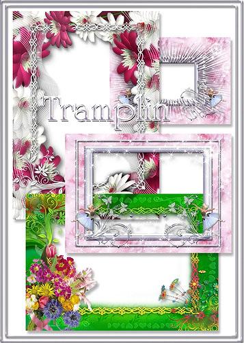 Сборник рамок для фото – Пурпурное, белое, зеленое