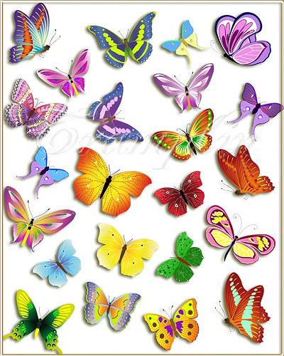 Клипарт – Разноцветные Бабочки