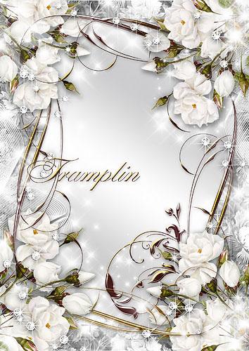 Цветочная рамка – Ожерелье  белых  роз