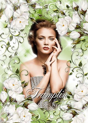 Цветочная рамка – Белые розы – хрусталя звезды