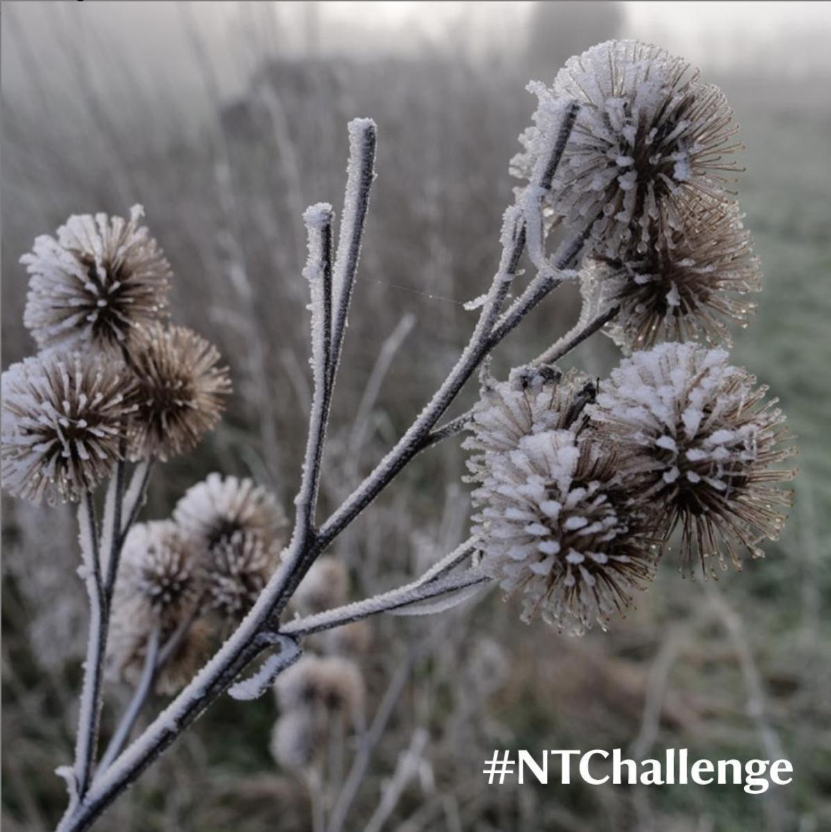 National Trust Challenge