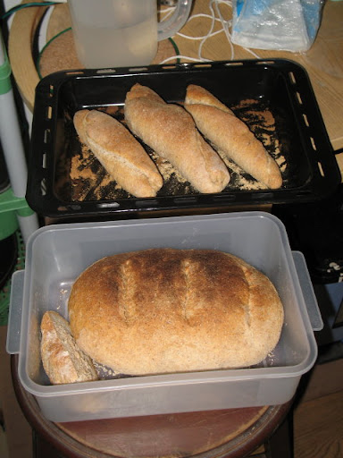 Bread and rolls: all from the same dough