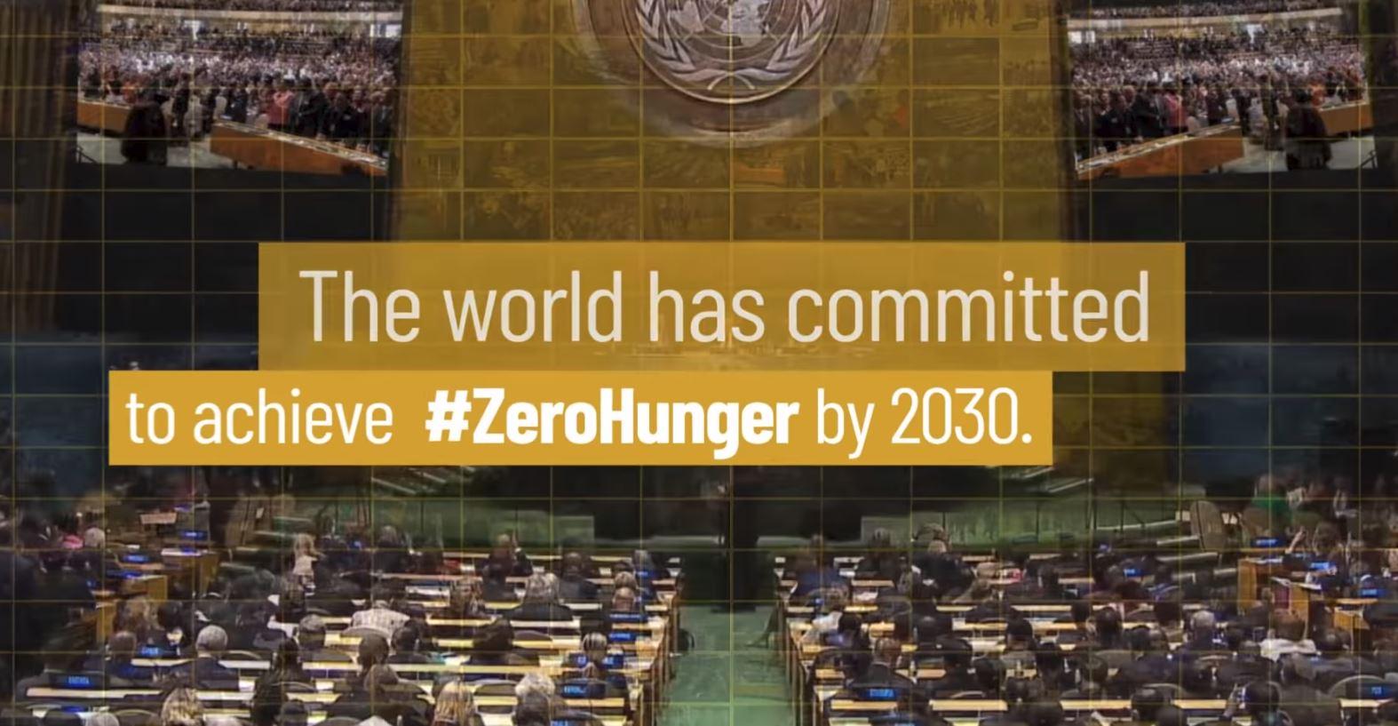 Tòa Thánh kêu gọi nỗ lực chung để chống lại nạn đói toàn cầu
