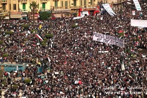اضواء على ثورة يناير