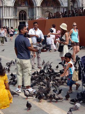 Palomas en la piazza