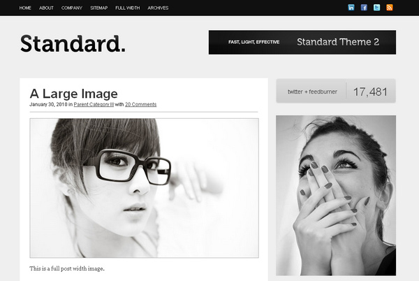 Standard WordPress Theme Framework