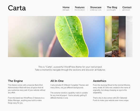 Carta Minimalist Design WordPress Theme