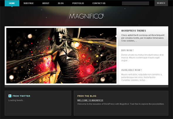 Maginifico WordPress Theme for Musicians