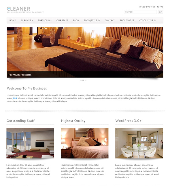Cleaner Professional WordPress Theme