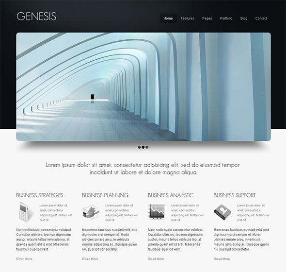 Genesis Professional WordPress Theme