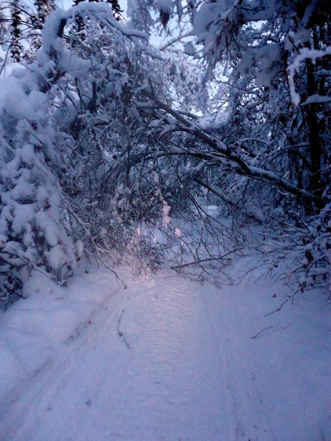 eldorado creek trail « Go Play Outside!
