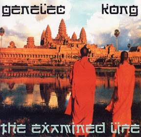 Genelec and Master Kong - The Examind Life