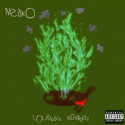 Neako_Loudpack_2_Highlights-front-large%5B1%5D.jpg