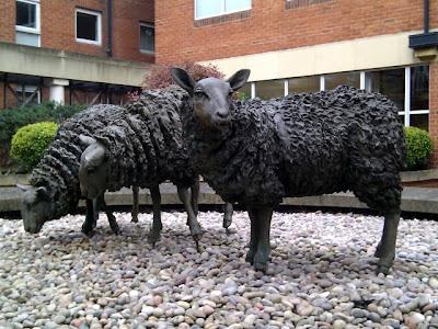 绵羊雕塑在英格兰吉尔福德
