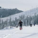 Skilanglauf am wilden Arber