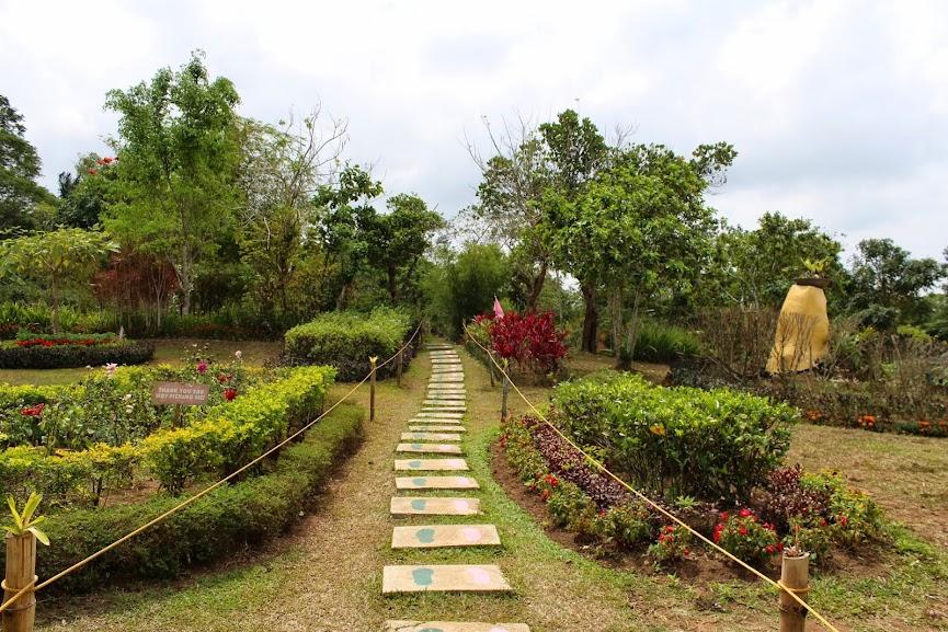 paradizoo tagaytay zoomanity park