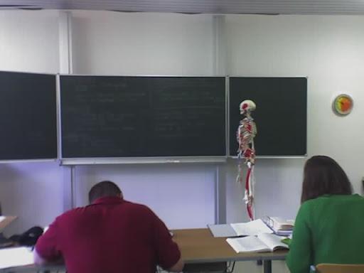 https://lh4.googleusercontent.com/_Ur8W_-li2FQ/TWlhkbUpPiI/AAAAAAAAZXA/p4RVAJZKLcA/Schule-Skelett-18-07-09_1050.jpg