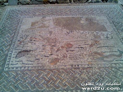وليلى المغربية تاريخ وحضارة