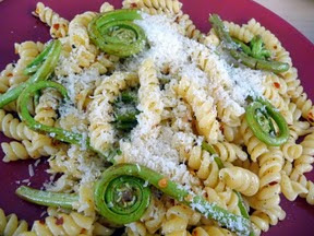 fiddlehead ferns in pasta
